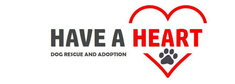 Have A Heart Dog Rescue and Adoption